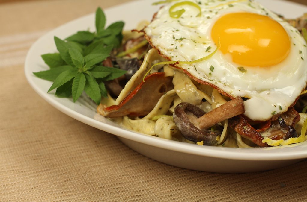 """Cooking with Cannabis, Part 2.-Fresh """"Herbed"""" Pasta with Wild Mushroom and Lemon Cream Sauce topped with (optional) Egg Sunny Side Up"""